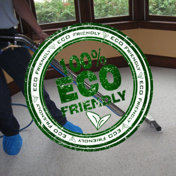 Green Cleaning Image